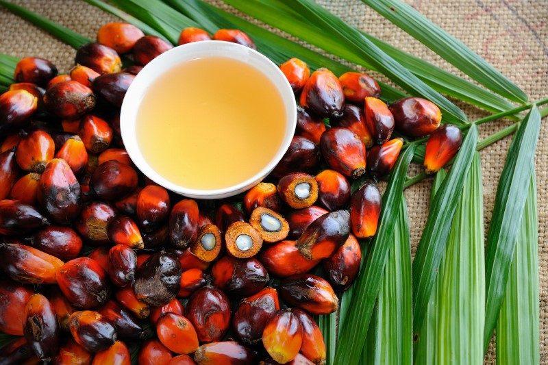 отказ от пальмового масла