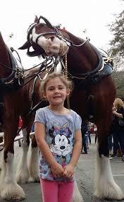 Папа сфотографировал дочку с лошадкой. Получилось нечто потрясающее — если посмотреть на фото в полном размере!